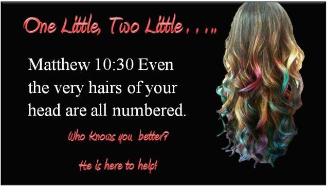 Bible hair