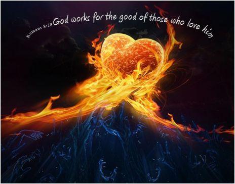 Bible Romans 8 28