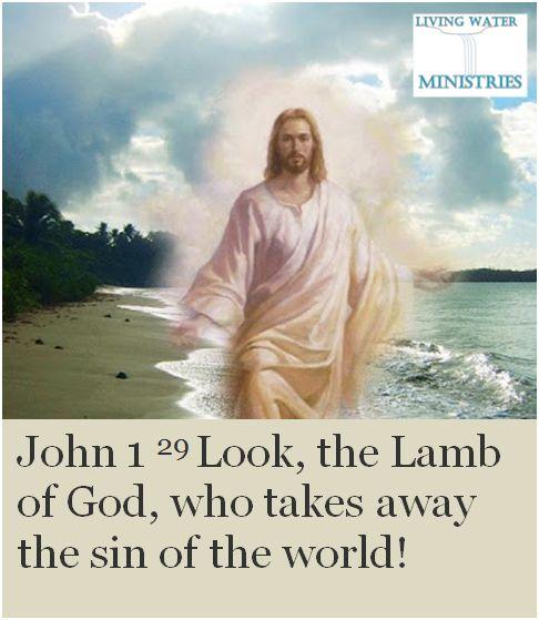 Bible lamb of god