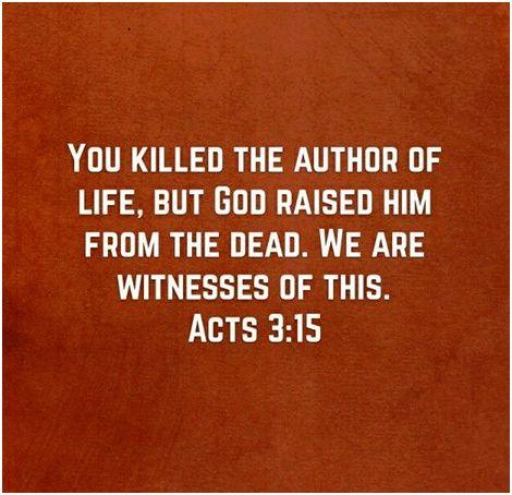 Bible witnesses