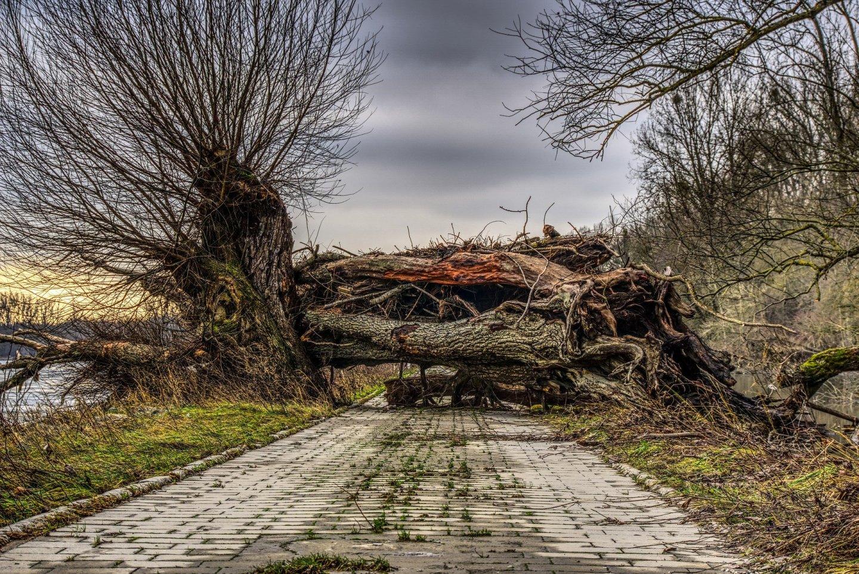 Impassable road block